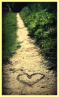 ♥♡♥•¸¸.•*¨*•♥Follow your heart♥¸¸.•*¨*•¸¸.•♥♡♥