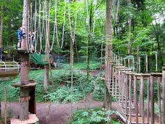 Climbing Forest (Kletternwald) in the Chiemsee, Bavaria, Germany - so much fun and very challenging!