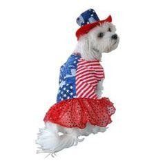 Anit Accessories Patriotic Dress Dog Costume, 8-Inch