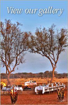 Jaci's Lodges | Madikwe Game Lodge | Madikwe Reserve