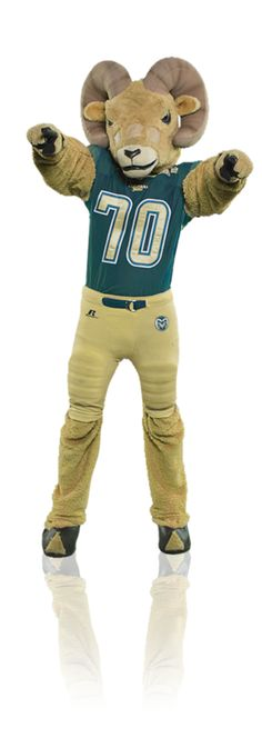 Vote early and often for CAM the Ram at capitalonebowl.com and daily on Twitter with #CapitalOneCAM to make your mascot number one.