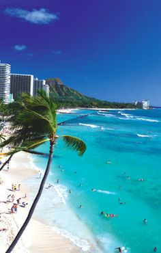 603893aca8378 160 Best Hawaii holiday! images