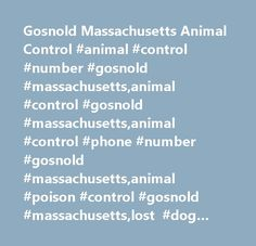 Gosnold Massachusetts Animal Control #animal #control #number #gosnold #massachusetts,animal #control #gosnold #massachusetts,animal #control #phone #number #gosnold #massachusetts,animal #poison #control #gosnold #massachusetts,lost #dog #gosnold #massachusetts,lost #pet #gosnold #massachusetts,abused #animal #gosnold #massachusetts,pet #rescue #gosnold #massachusetts,pet #gosnold #massachusetts,animal #gosnold #massachusetts…