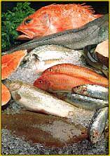 Soufflé de Bacalhau-Roteiro Gastronómico de Portugal