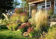 ornamental grasses landscaping
