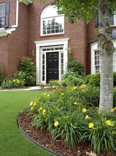 Are Your Sidelights Painted the Trim or Front Door Color