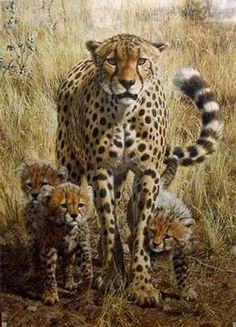 Cheetah family painting by Carl Brenders Animals And Pets, Baby Animals, Cute Animals, Wild Animals, Big Cats Art, Cat Art, Wildlife Paintings, Wildlife Art, Beautiful Cats