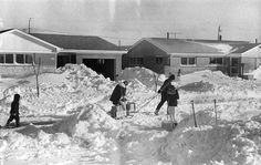 Grocery run  ( Tribune archive photo / January 29, 1967 )  A Midlothian, Ill. family brings groceries home using a sled after area's worst snowstorm in history.