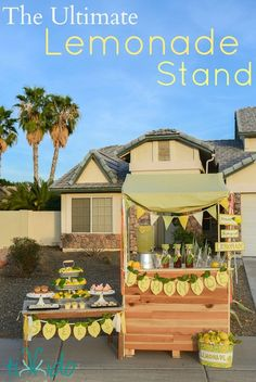 Need some fun ideas for a Lemonade Stand? (makes a great drinks station at a birthday party, too!)