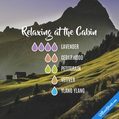 Relaxing at the Cabin - Essential Oil Diffuser Blend