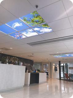 Świetlik LED zainstalowany na suficie w holu firmy oświetla wnętrze. Sufit kasetonowy uzupełniony lumlyxem o wymiarach 120x180. Panel emituje światło dzienne.