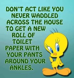 Tweety Bird Quotes, Cartoon Jokes, Cartoons, Cute Love Pictures, Funny Quotes About Life, Cute Funny Animals, Looney Tunes, Quote Of The Day, Like You