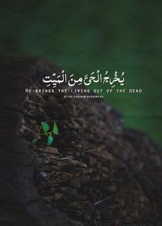 "Image about green in My Designs ""Quran"" by Saeed islamicART Beautiful Quran Quotes, Quran Quotes Inspirational, Beautiful Names Of Allah, Islamic Love Quotes, Muslim Quotes, Spiritual Quotes, Arabic Quotes, Words Hurt Quotes, Faith Quotes"