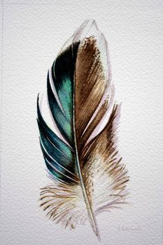 Original Watercolor - Feather Study 176 Mallard feather  from Australia - Nightly Study June 10th