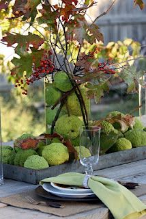 Sweet Something Designs: Harvest Green Tablescape. great way to use osage oranges (or hedge apples as some call them) in an arrangement Decoration Buffet, Table Decorations, Autumn Decorating, Decorating Ideas, Decor Ideas, Fall Table, Deco Table, Thanksgiving Decorations, Outdoor Thanksgiving