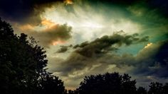 tree, low angle view, silhouette, sky, tranquility, cloud - sky, scenics, tranquil scene, beauty in nature, cloudy, nature, sunset, growth, cloud, branch, outdoors, cloudscape, majestic, treetop, outline, day, solitude, high section, atmospheric mood, remote, dramatic sky, non-urban scene, no people, storm cloud