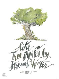 Like  a Tree planted by Streams of Water Psalm 1:3  PRINT