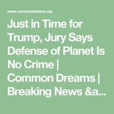 Just in Time for Trump, Jury Says Defense of Planet Is No Crime | Common Dreams | Breaking News & Views for the Progressive Community