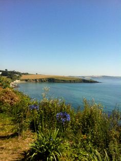 Beautiful view of Gerrans Bay from guest Sam - thanks!