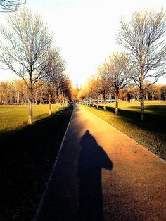 The walk home through pontcanna fields
