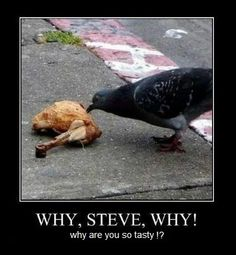 Why Steve Why Motivational Poster