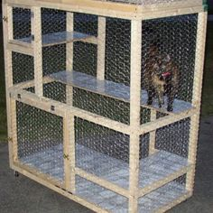 How to build a cat cage  http://tazthecat.net/catcage/one-html/catcage-howto.html