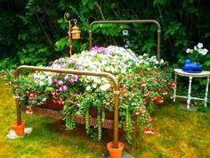 Ultimissime dall'orto: su un letto di fiori...