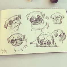 The Art of Xindi Yan — Meeting doodle of pugs. #doodle #drawing #sketch...