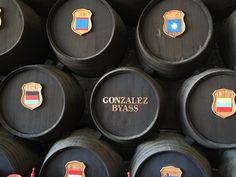 Winnica Gonzales Byass,  Jerez de la Frontera, Kadyks (Sherry Fino Tio Pepe ) Blue