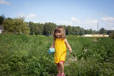 Seeing Blue: 10 Organic & Natural U-Pick Blueberry Farms
