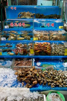 Noryagjin fish market in Seoul, South Korea is like a better organized more tourist friendly version of Tsukiji in Tokyo. And there's a hidden restaurant underneath.
