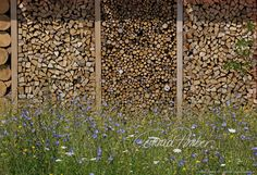 Motive finden - Conrad Amber Railroad Tracks, Woodwind Instrument, Wood Walls, Country, Nature
