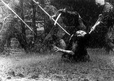 Seven Samurai (1954), Directed by Akira Kurosawa, Cinematography by  Asakazu Nakai.