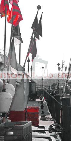 Warnemünde Alter Strom Fischmarkt, im Hintergrund die Warnowwerft