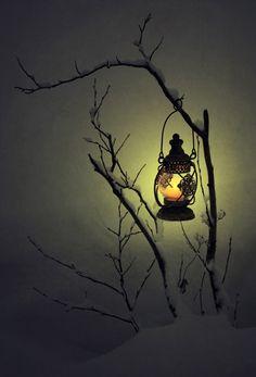 Winter, snow, lamp on bare branch Winter Magic, Winter Beauty, Jolie Photo, Winter Scenes, Winter Christmas, Winter Snow, Dark Winter, Mists, Art Photography