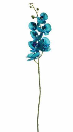 """Phalaenopsis Silk Orchid Spray in Aqua Malibu Blue<br>3-4"""" Blooms x 40"""" Tall"""