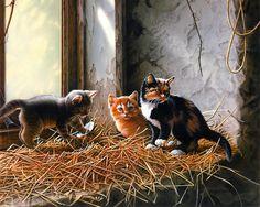 Скачать обои животные, котята на подоконнике, Jerry Gadamus 1600x1200