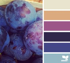 Produced Hues via @designseeds