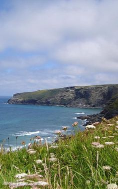 Snorkelling, Pavement, Somerset, World War Two, Geology, Devon, The Rock, Cornwall, Places To See