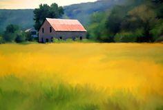 Mustard Field Stone Barn | Roger Dullinger L