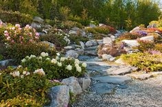 Tromssasta löytyy maailman pohjoisin kasvitieteellinen puutarha.