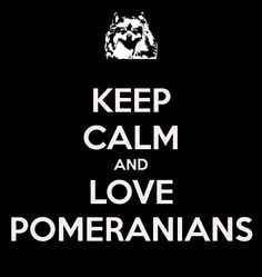 KEEP CALM AND LOVE POMERANIANS - KEEP CALM AND CARRY ON Image Generator - brought to you by the Ministry of Information