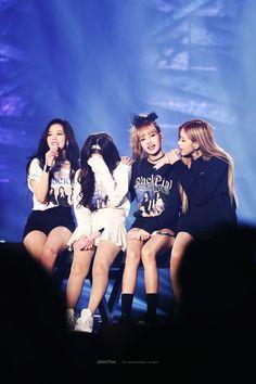 Jisoo,Jennie,Lisa and Rose Kpop Girl Groups, Korean Girl Groups, Kpop Girls, Yg Entertainment, K Pop, Jenny Kim, Polaroid, Number One Hits, Little Girls