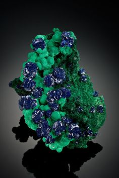 Azurite on malachite. This specimen, from Bisbee, Arizona, will be displayed at…