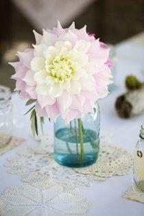 #wedding #rose