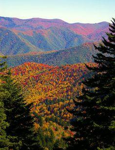 Fall color along the Blue Ridge Parkway in North Carolina
