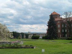 Castillo y Catedral de wawel