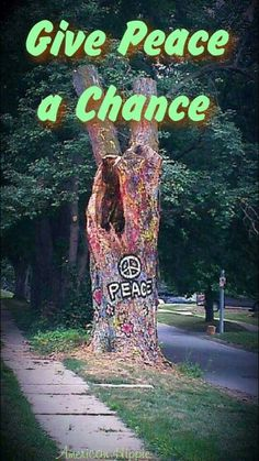 ☮ American Hippie ☮ Give peace a chance