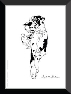 Harlequin Great Dane Print. Dog wall art 5x7 room by LineArtPrints. I'm posting dog prints slowly but surely.