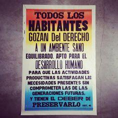 Artículo 41 - Marina Pla / Diseño Gráfico Independiente / Graphic Design Studio